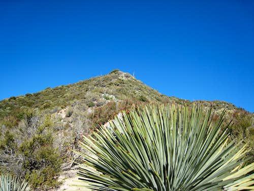 Heaton Flat Trail and South Ridge
