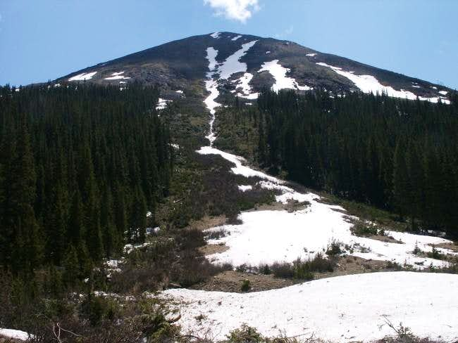 Recent avalanche path coming...