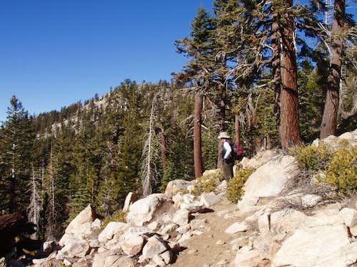 Sherman Peak Trail