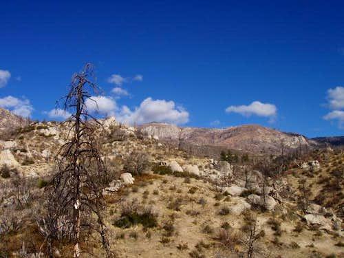 Looking up towards Sherman Peak