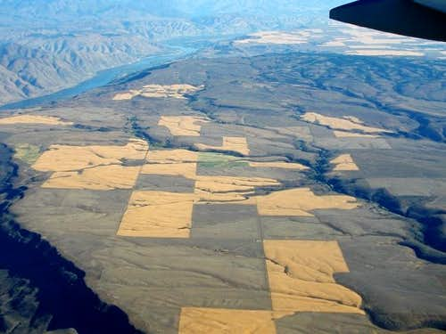 Badger from the air