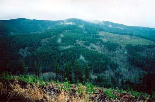 Larch Mtn - north side