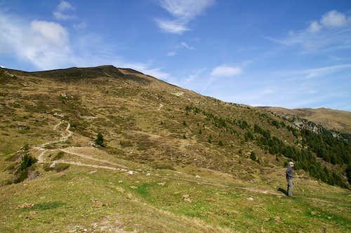Königsanger Spitze / Monte del Pascolo