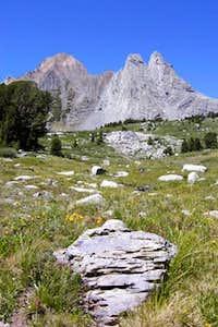 Virginia Peak -2 August 09,...
