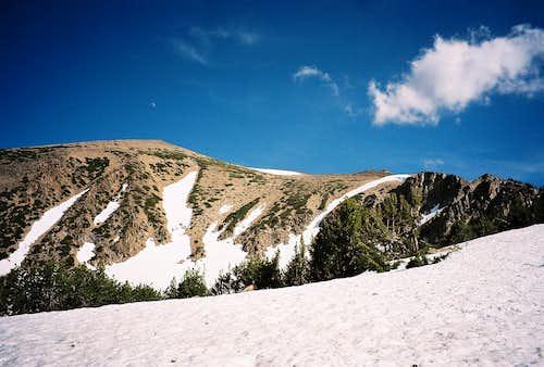 Freel Peak from the Tahoe Rim Trail