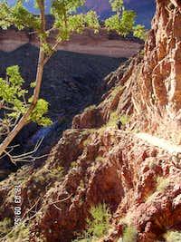 Lower Bright Angel Trail