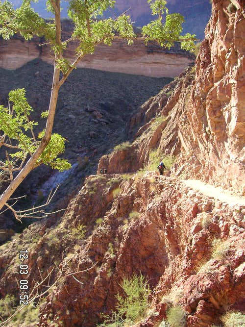 Lower Bright Angel Trail