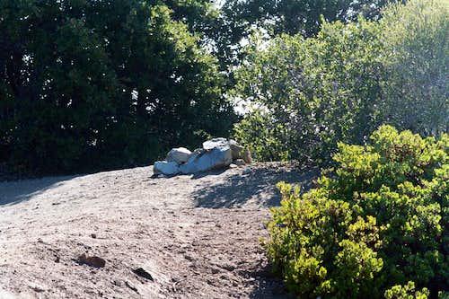 Summit of Mt. Deception (5,796'), San Gabriel Mtns.