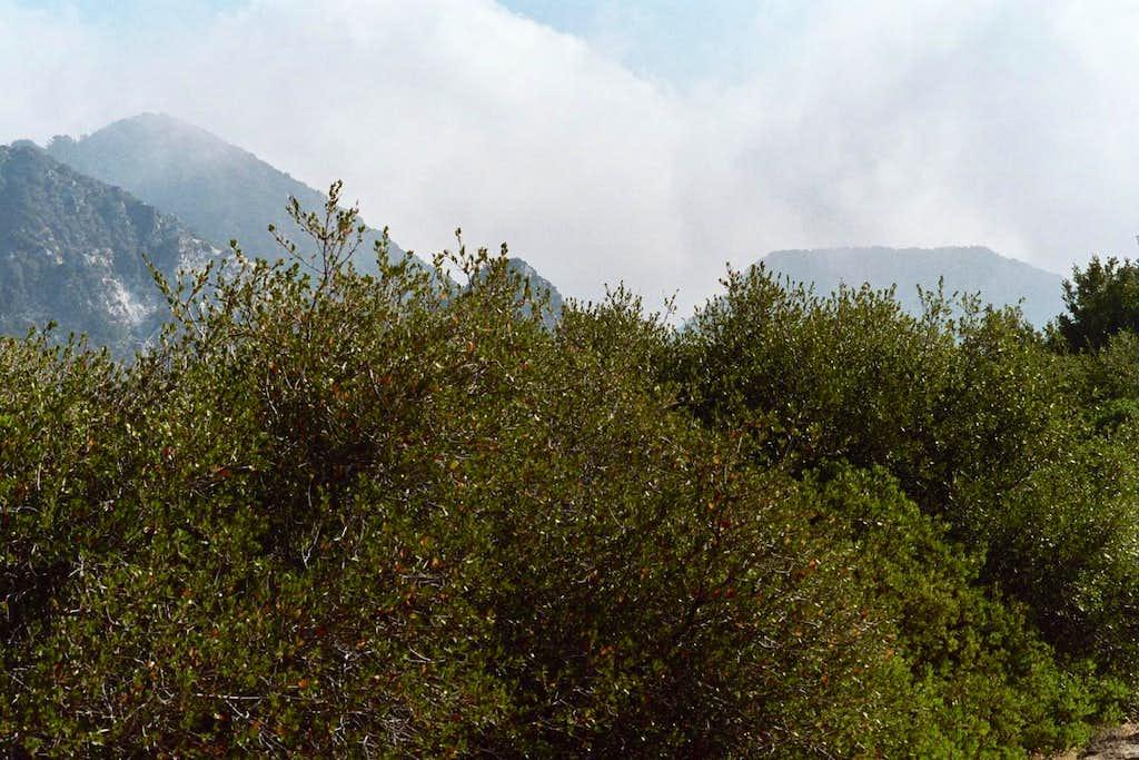 L-R: Mt. Disappointment (partial), San Gabriel Pk., Mt. Markham