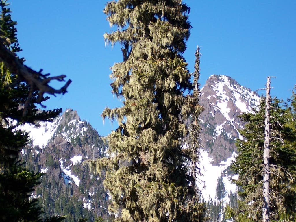 Mount Eleanor