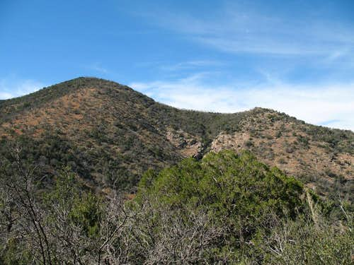 Rice Peak and Pinal COHP