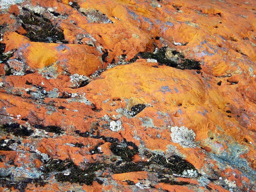 Rocks near the Mendenhall Glacier