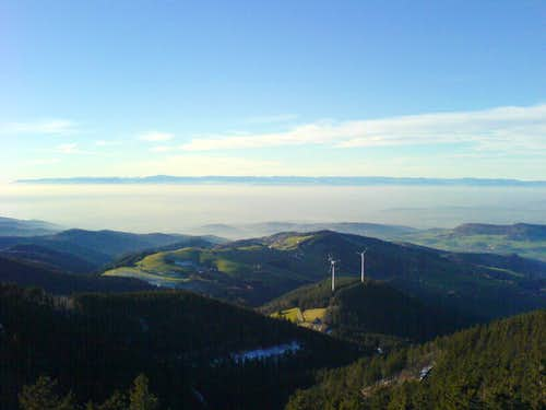 View to the Vogeses from Black Forrest
