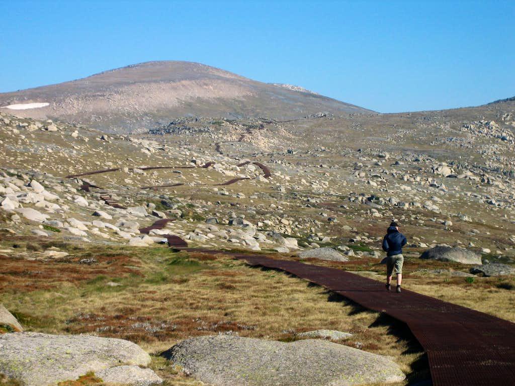 Mt. Kosciuszko