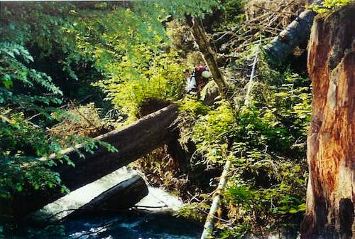 The infamous log crossing...