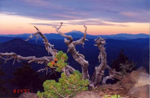 Mt. Shasta from about the...