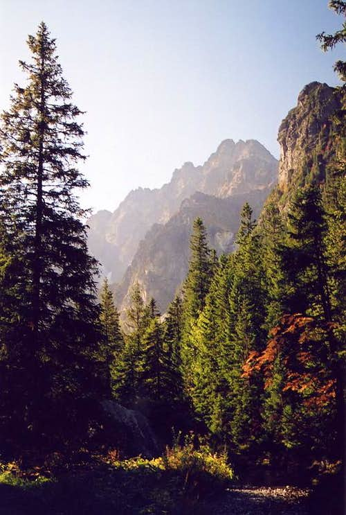 Ganek above Bielovodska Valley
