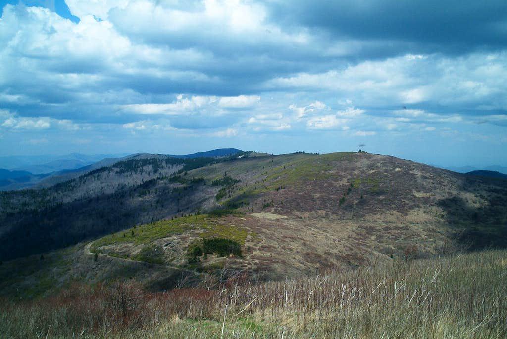 Southern Appalachian Balds II