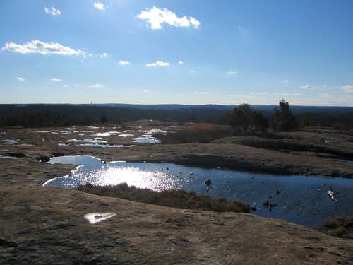 Vernal Pools on top of Bradley Mountain