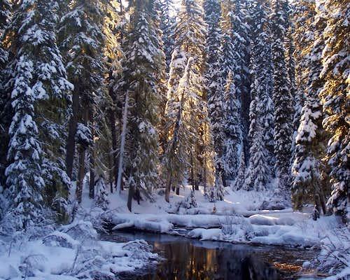 Salt creek at Gold lake.