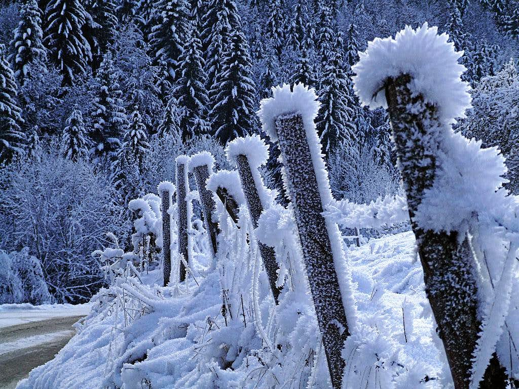 Lobnik valley