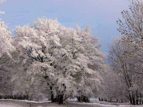 Zadielské Highland in winter
