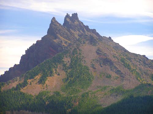 Unique View of Three Fingered Jack
