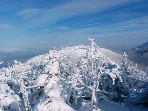 Wright Peak, seen through the...