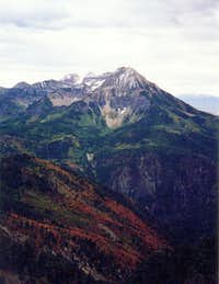 Timp from