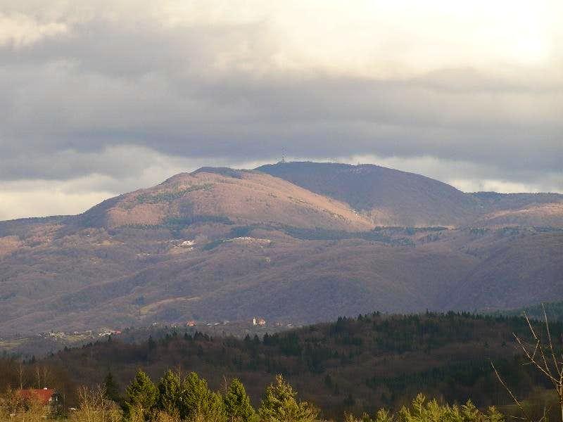 Trdinov vrh from west