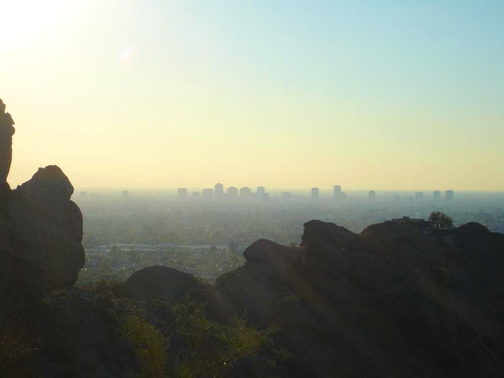 Phoenix silhouetted