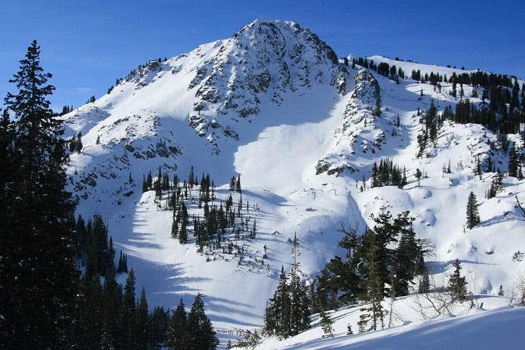 Mt. Tuscarora