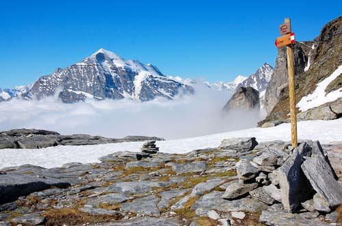M.te Leone from the Ritterpass