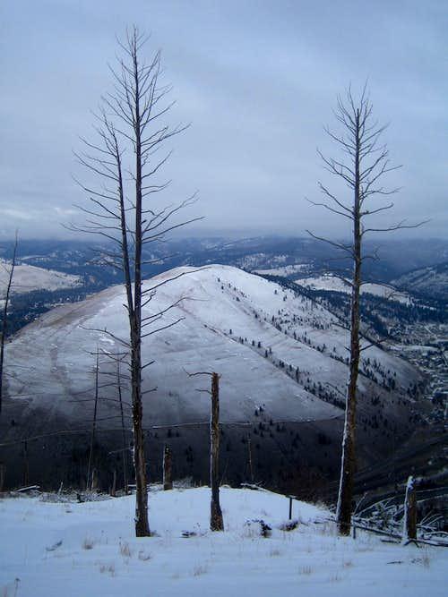 Towards Mount Jumbo
