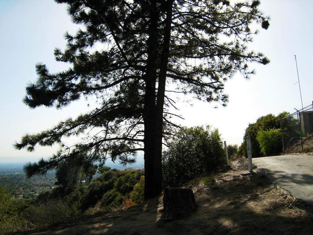 Altdadena Crest Trail, San Gabriel Mountains
