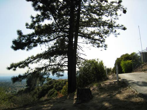 Altdadena Crest Trail, San Gabriel Mountains