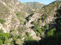 Looking up Millard Canyon, San Gabriel Mountains
