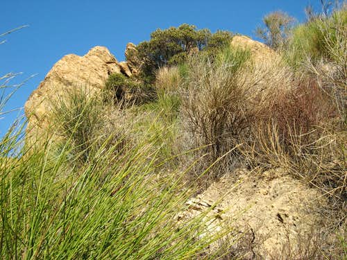 Rock Outcrop at Cape of Good Hope, San Gabriel Mountains
