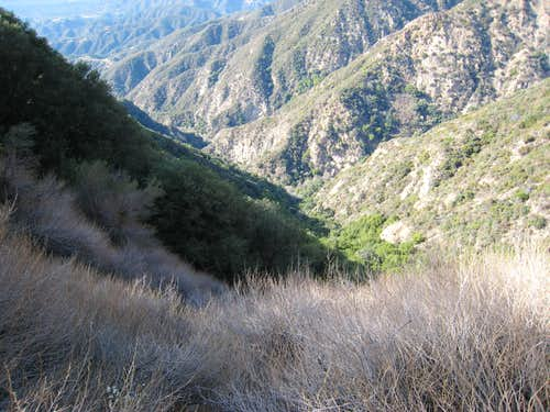 Millard Canyon, San Gabriel Mountains