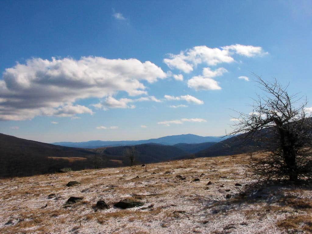 The Ridge above Elk Garden