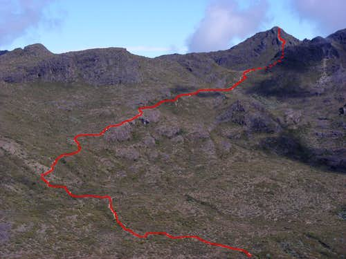 Cerro Chirripo seen from route up Terbi