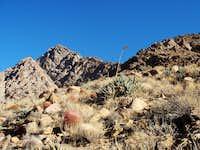 Anza Borrego's Indianhead Mountain