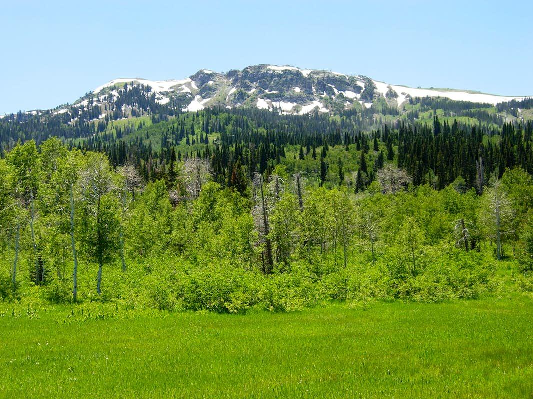 how tall is bountiful peak