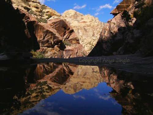 Bridge Mountain Reflection