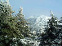 Avery Peak