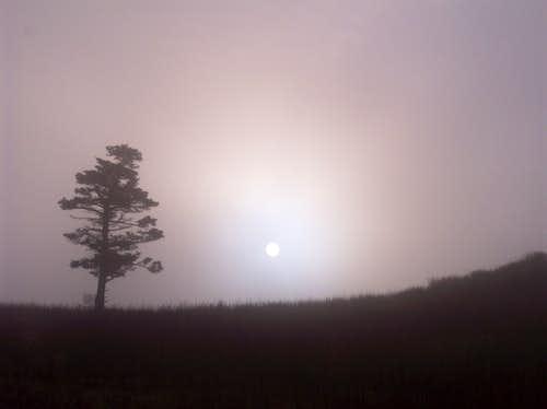 Sunrise on Mt. Rodgers