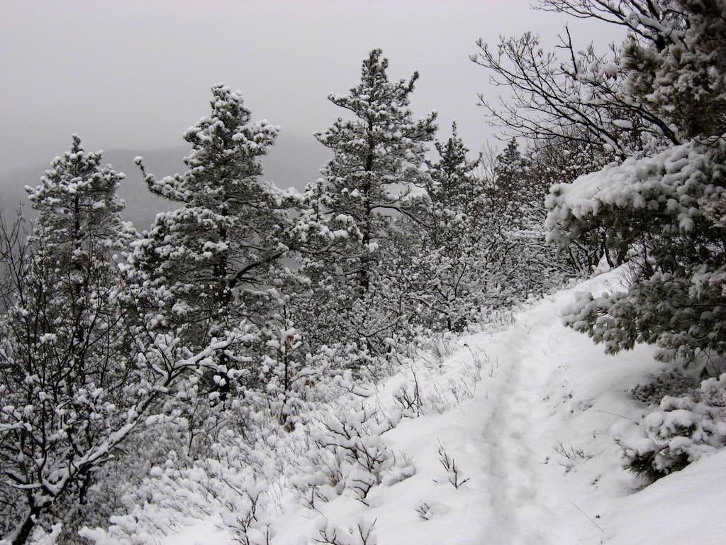 Winter in the Porkies
