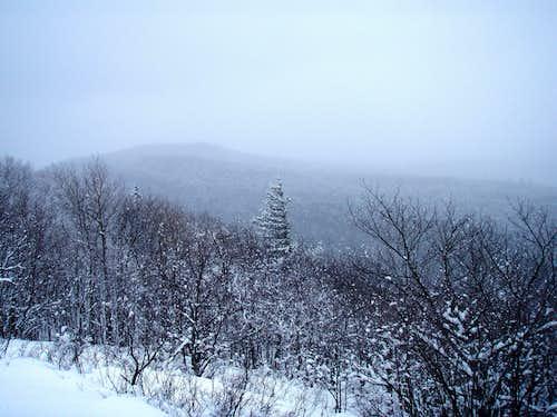 First Glimpse on the Escarpment