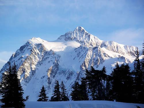Shuksan\'s winter coat