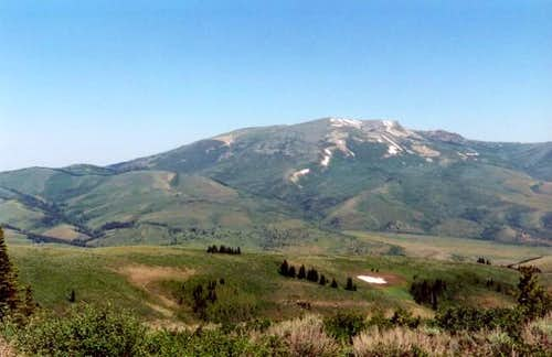 Mt. Harrison (9265') from the...
